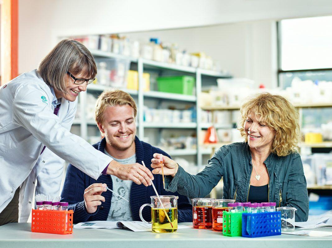 Etterutdanning av pedagoger